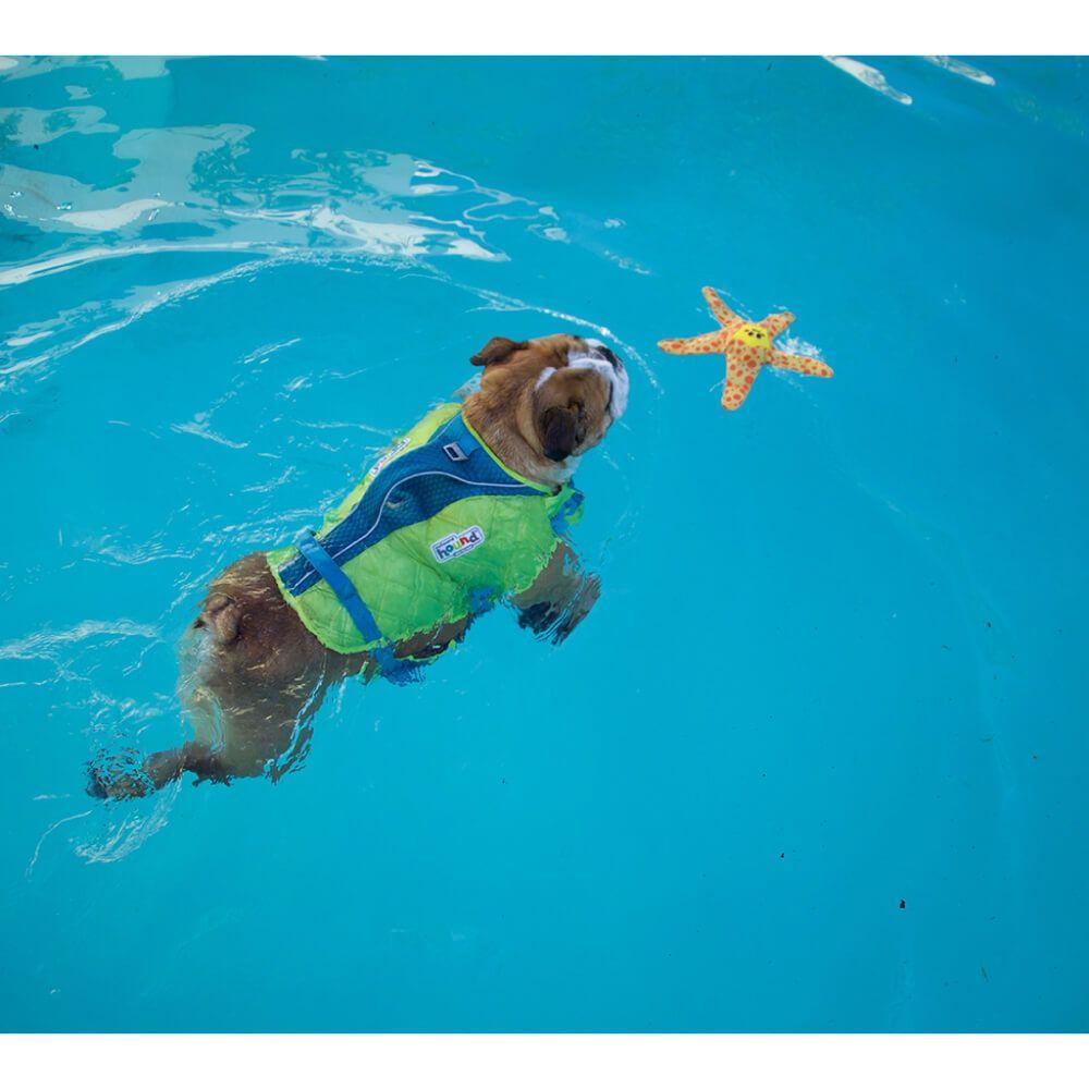 Brinquedo Outward Hound Floatiez Baleia Unicórnio  - Focinharia