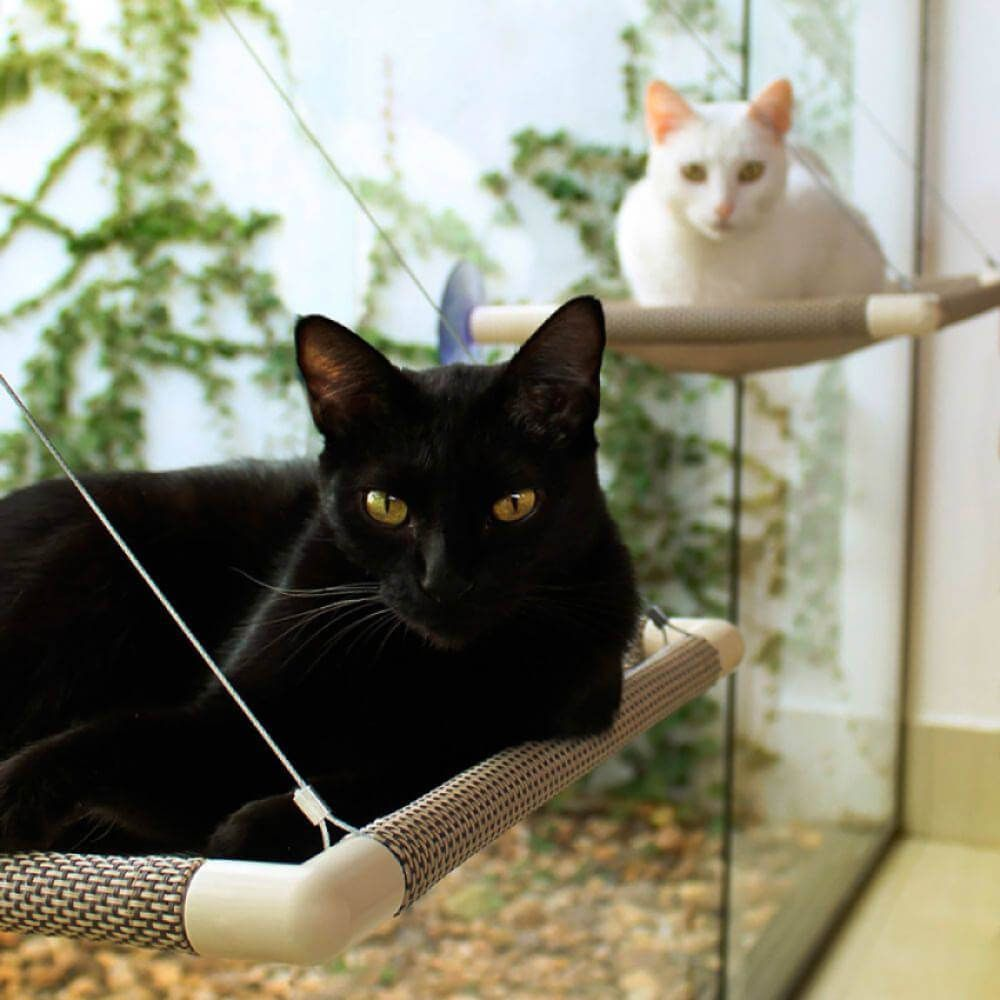 Cama de Gato para Janela Gatton Catbed Aloha  - Focinharia