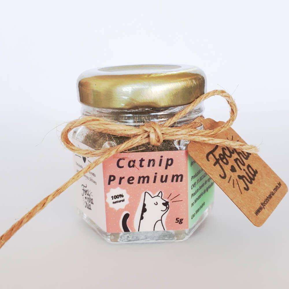 Catnip Premium Focinharia 5g  - Focinharia