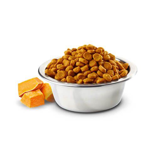 Ração Farmina N&D Pumpkin Cordeiro e Blueberry para Cães Adultos de Raças Grandes 10,1 Kg  - Focinharia