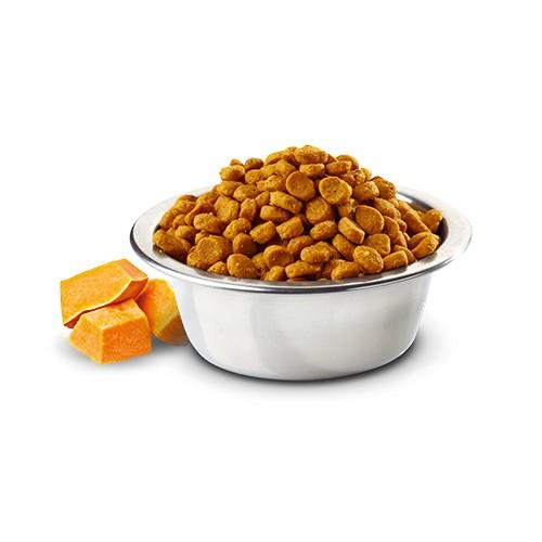 Ração Farmina N&D Pumpkin Pato e Melão para Gatos Adultos  - Focinharia