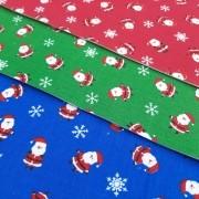 Folha de Eva Com Tecido Papai Noel Mini 40x30 cm