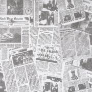 Folha de Eva Estampado Jornal