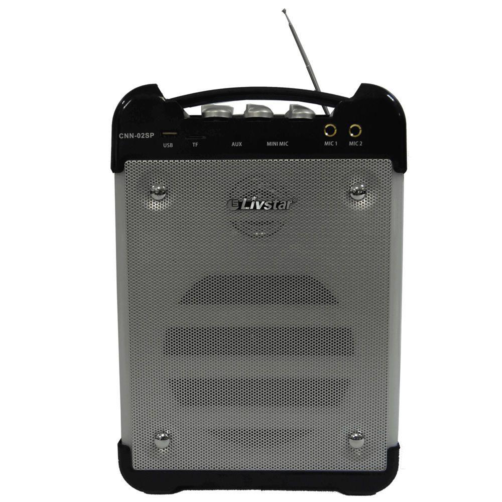 Caixa de Som Bluetooth Amplificada Karaokê Led 30w RMS Usb