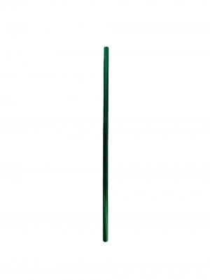 Canudo de Aço Inox Verde Básico Reto