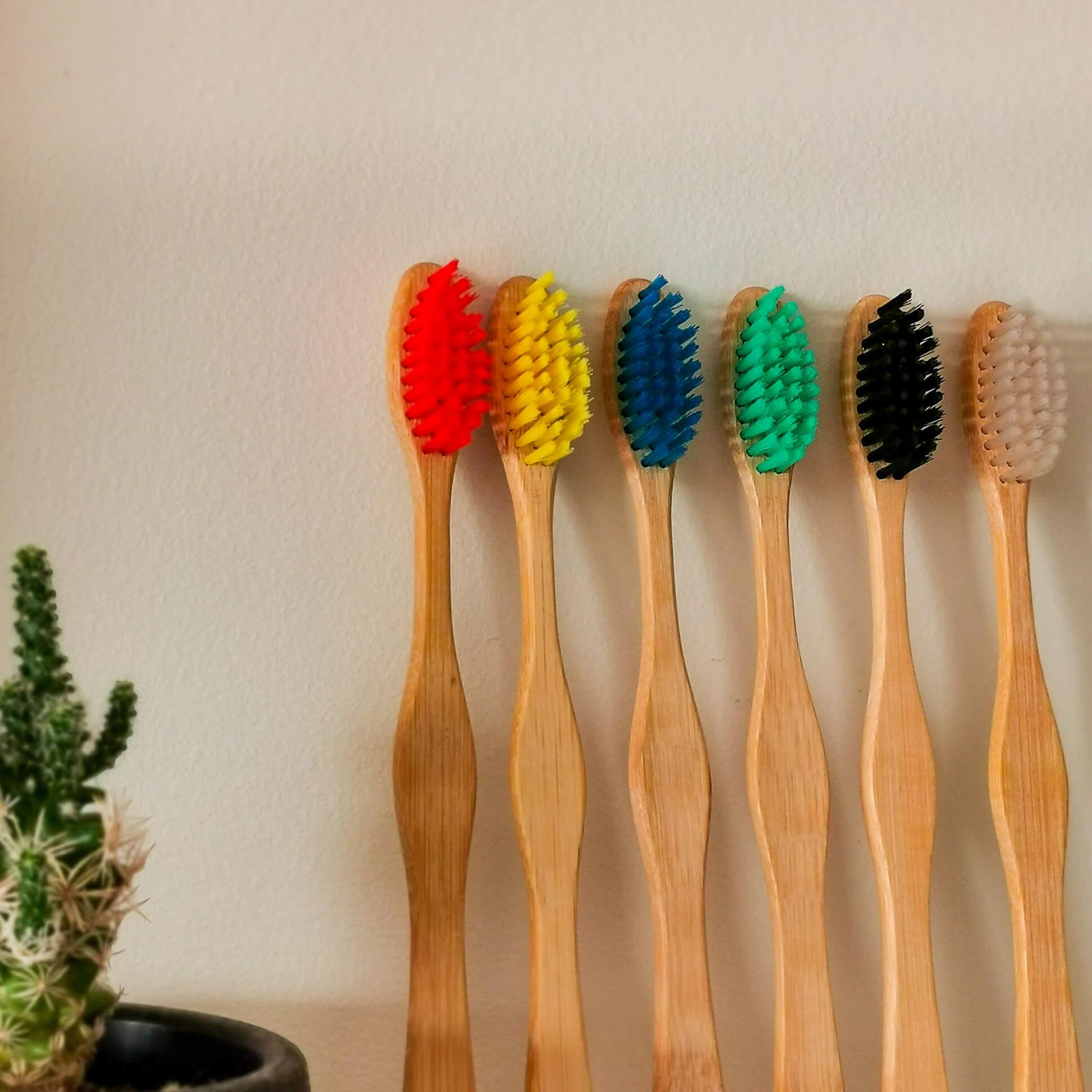 Escova de Dente de Bambu Nacional Individual