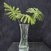 Vaso Decorativo Vidro incolor