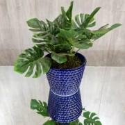 Vaso Decorativo Azul 2016