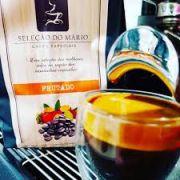 Café Zardo - Blend Especial - Pré Treino - Torrado em Grãos - 500 gr
