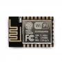 Módulo Wireless ESP8266 ESP-12E