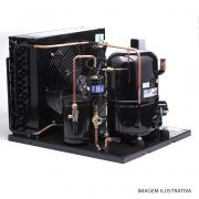 Unidade Condensadora Tecumseh L'Unite TFH4524F-TZ.71 24000 Btu/h