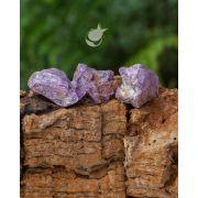 STICHTITA BRUTA - UNIDADE - Média de 3 a 4 cm ( 18 a 20 g)