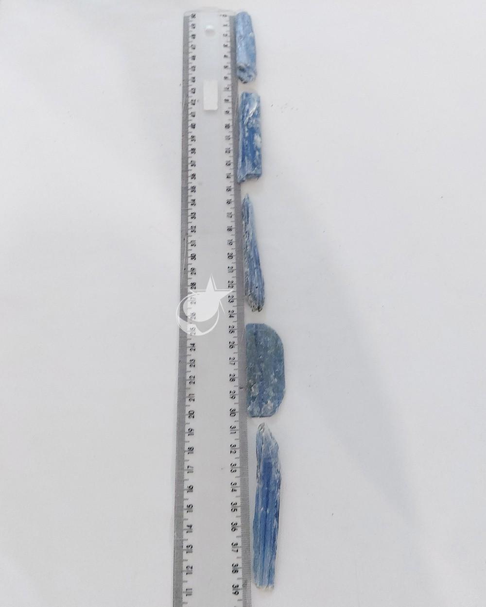 CIANITA AZUL  - UNIDADE - 6 a 8 cm (15 a 20g)