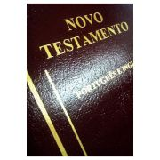 Novo Testamento Bilíngue Português/Inglês