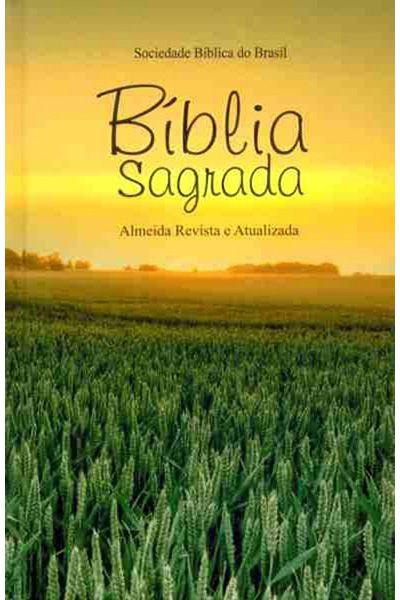 RA063M - Bíblia Sagrada - Capa Dura - Tradicional