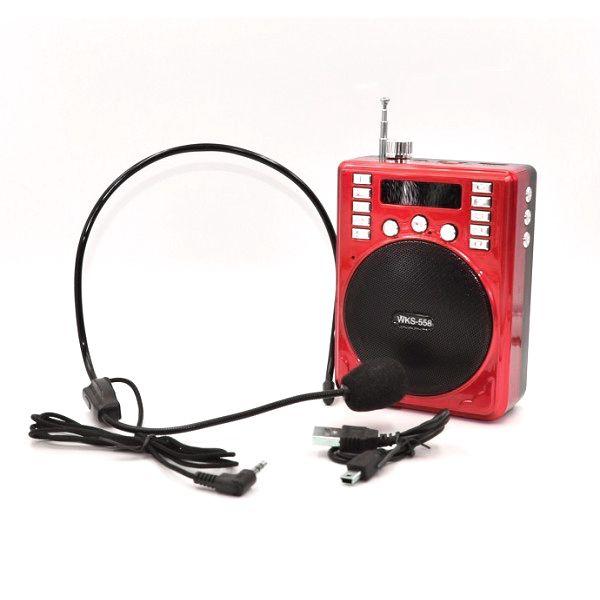Microfone Com Mini Caixa Para Palestras Mp3 Usb Rádio