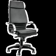 Cadeira Diretor Sênior