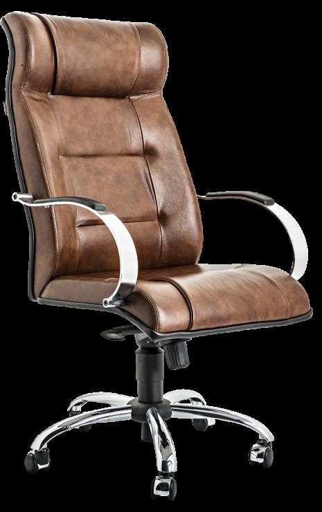 Cadeira Diretor Master
