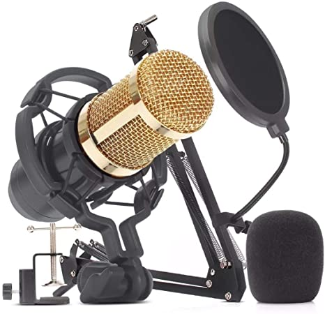 Kit Microfone Condensador  Profissional BM-800 Com braço Articulado