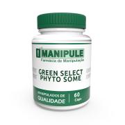 Greenselect Phytosome® 120mg - 60 Cápsulas - ganhe 1 Gel Crioterápico 30g