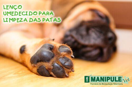 Lenço Umedecido Para Limpeza Das Patas 15 Un  - Manipule - Farmácia de Manipulação