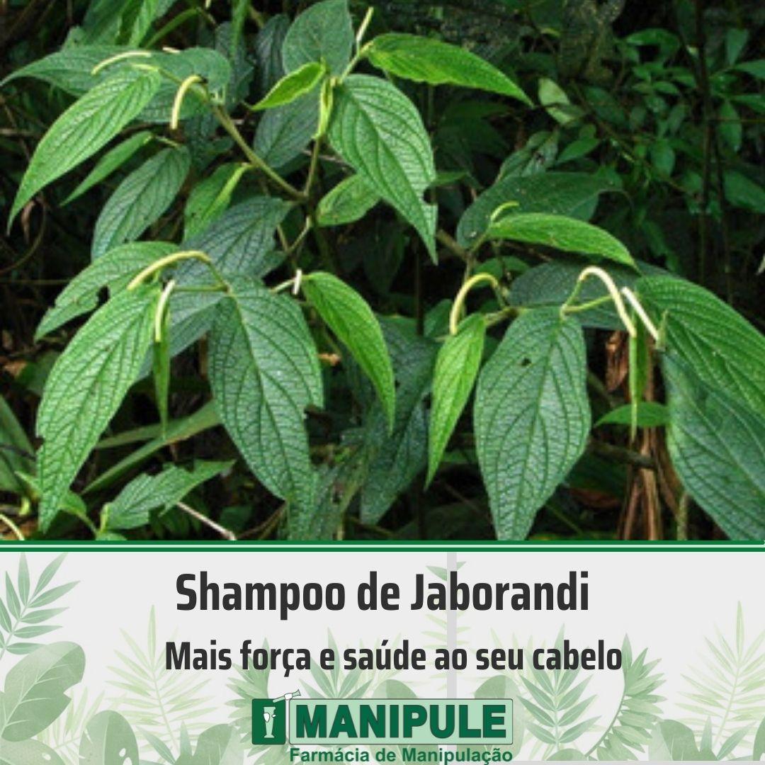 Shampoo de Jaborandi - 100ml  - Loja Online | Manipule - Farmácia de Manipulação