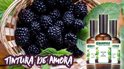 Tintura de Amora - 30ml  - Loja Online | Manipule - Farmácia de Manipulação