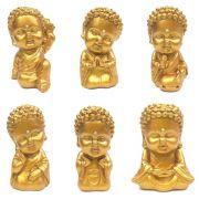 Conjunto Buda Baby com 6 Modelos