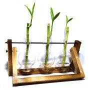 Suporte Triplo em Madeira e Vaso Pendente com Bambu da Sorte