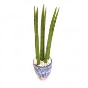 Vaso em Cerâmica Arte Tupi com Lança de São Jorge Reta (Grande)