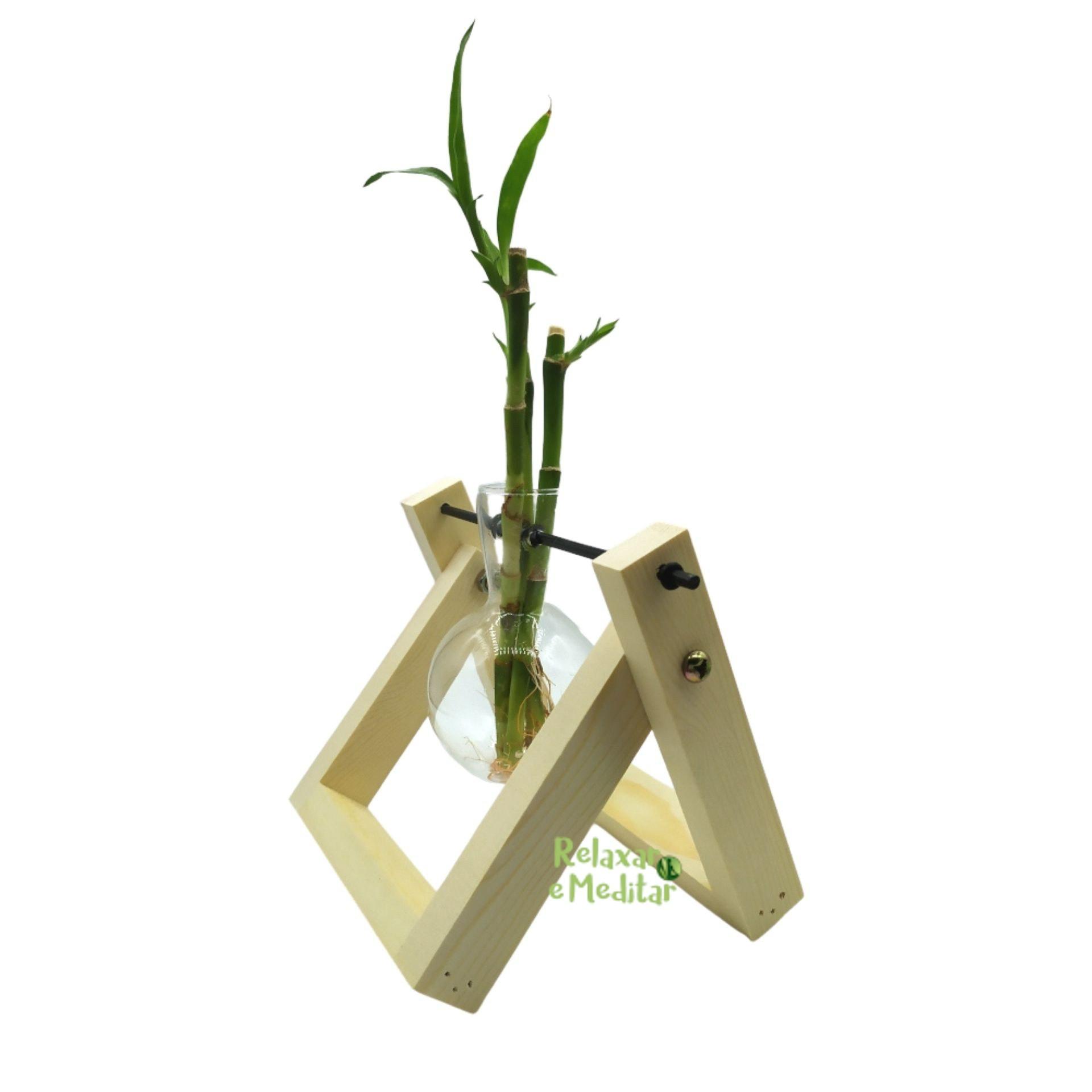 Bambu da Sorte com Suporte em Madeira e Vaso Pendente (3 Hastes)