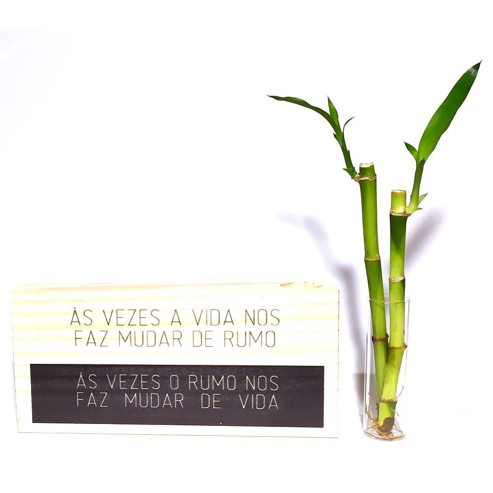 Bloco de Madeira com 2 Hastes de Bambu da Sorte (Vida)