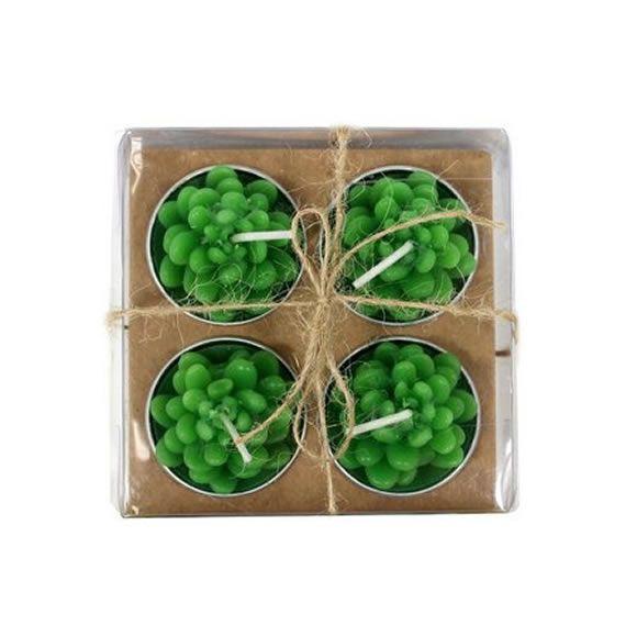 Kit com 4 Velas Temáticas (Suculentas)