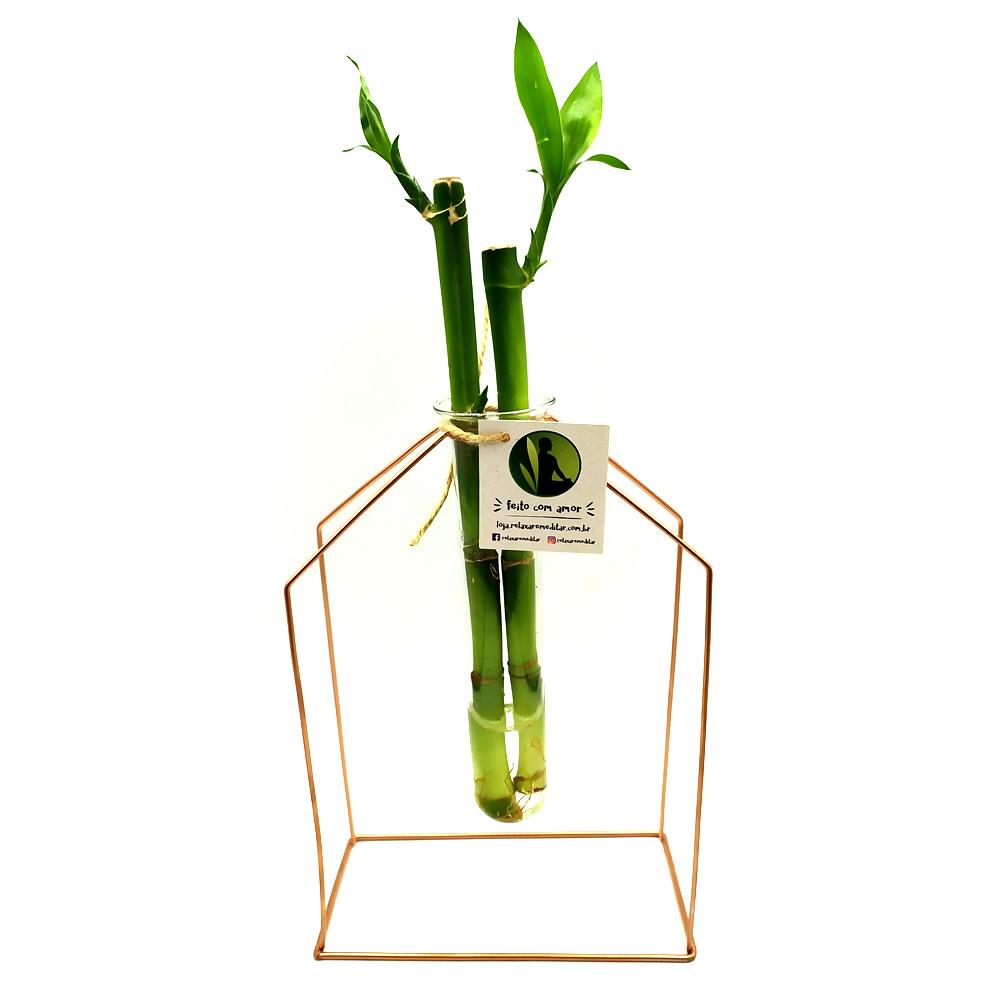 Suporte em Metal e Vaso de Vidro com Bambu da Sorte (Casinha)