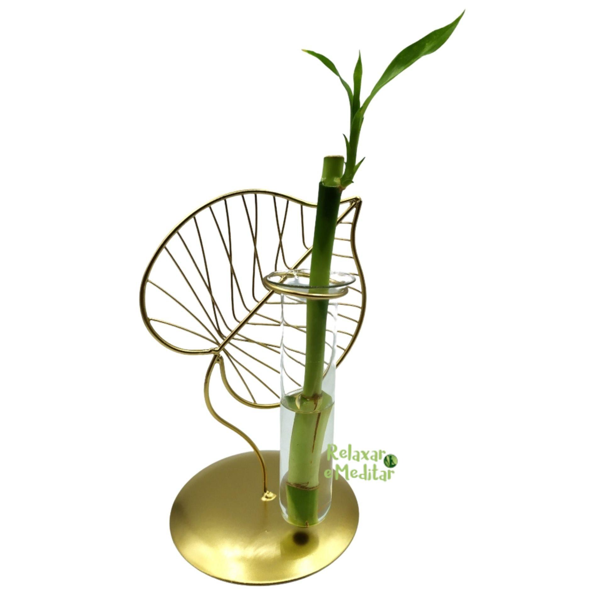 Suporte em Metal e Vaso de Vidro com Bambu da Sorte (Folha)