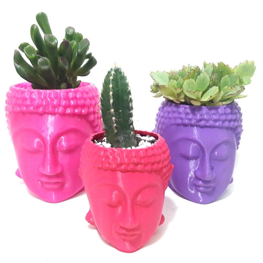 Trio de Vasos Cabeça de Buda com Suculentas