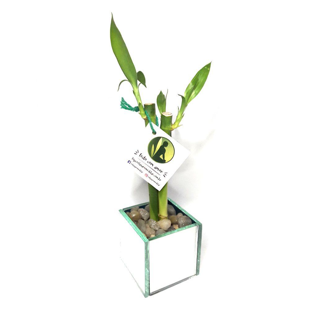 Vaso Cachepot Espelhado com 3 Hastes de Bambu da Sorte