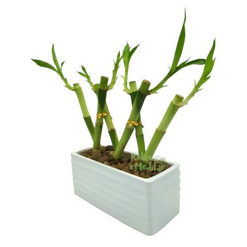 Vaso com 6 Hastes de Bambu da Sorte Trançado