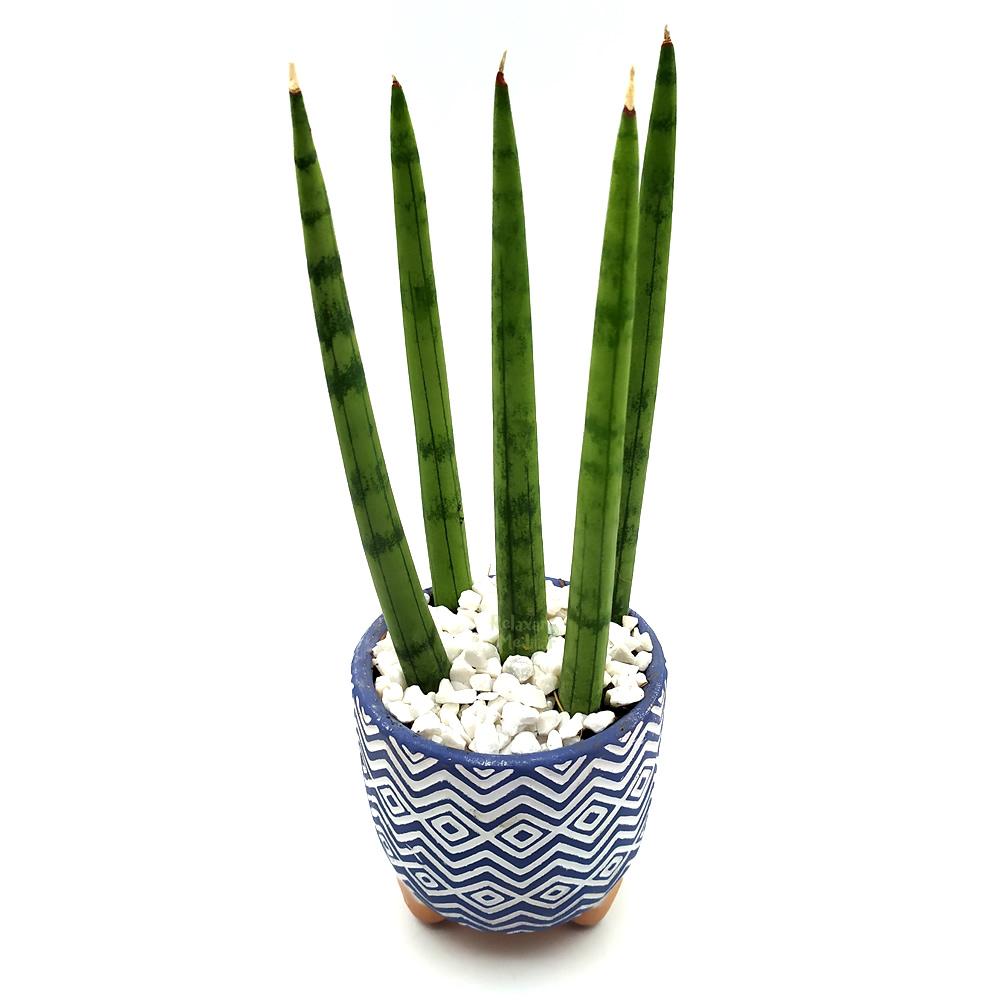 Vaso em Cerâmica Tupi com Lança de São Jorge Reta (Pequena)