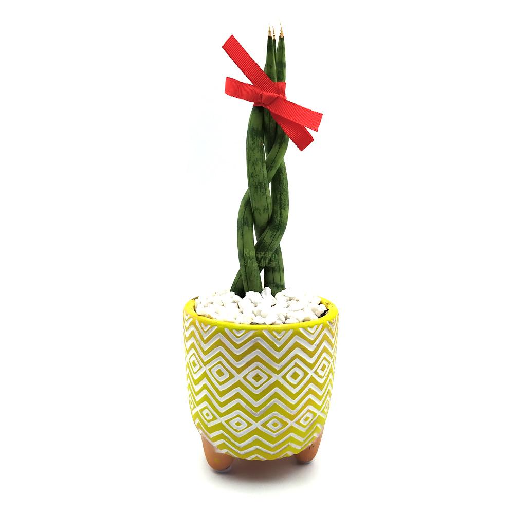 Vaso em Cerâmica Tupi com Lança de São Jorge Trançada (Pequena)