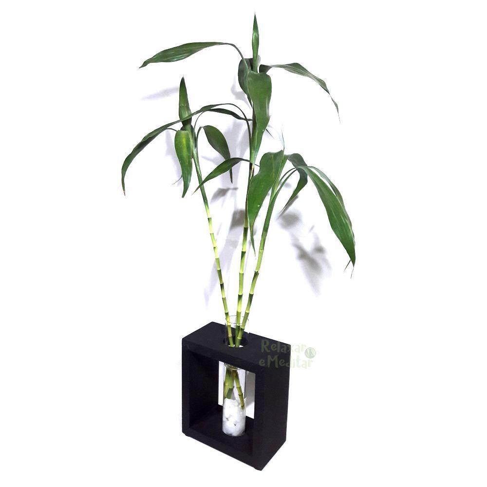 Vaso em Vidro e Suporte de Madeira Grande com 3 Hastes de Bambu da Sorte