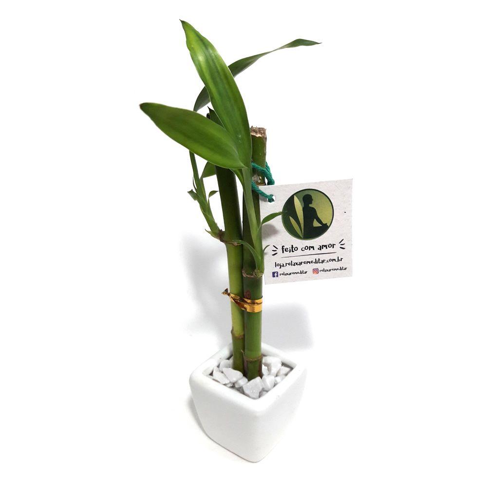 Vaso Quadrado com Dois Bambus da Sorte (Branco)