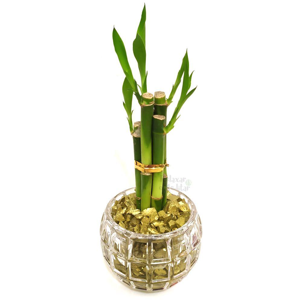 Vaso Redondo com Cinco Hastes de Bambu da Sorte (Energia do Sol)