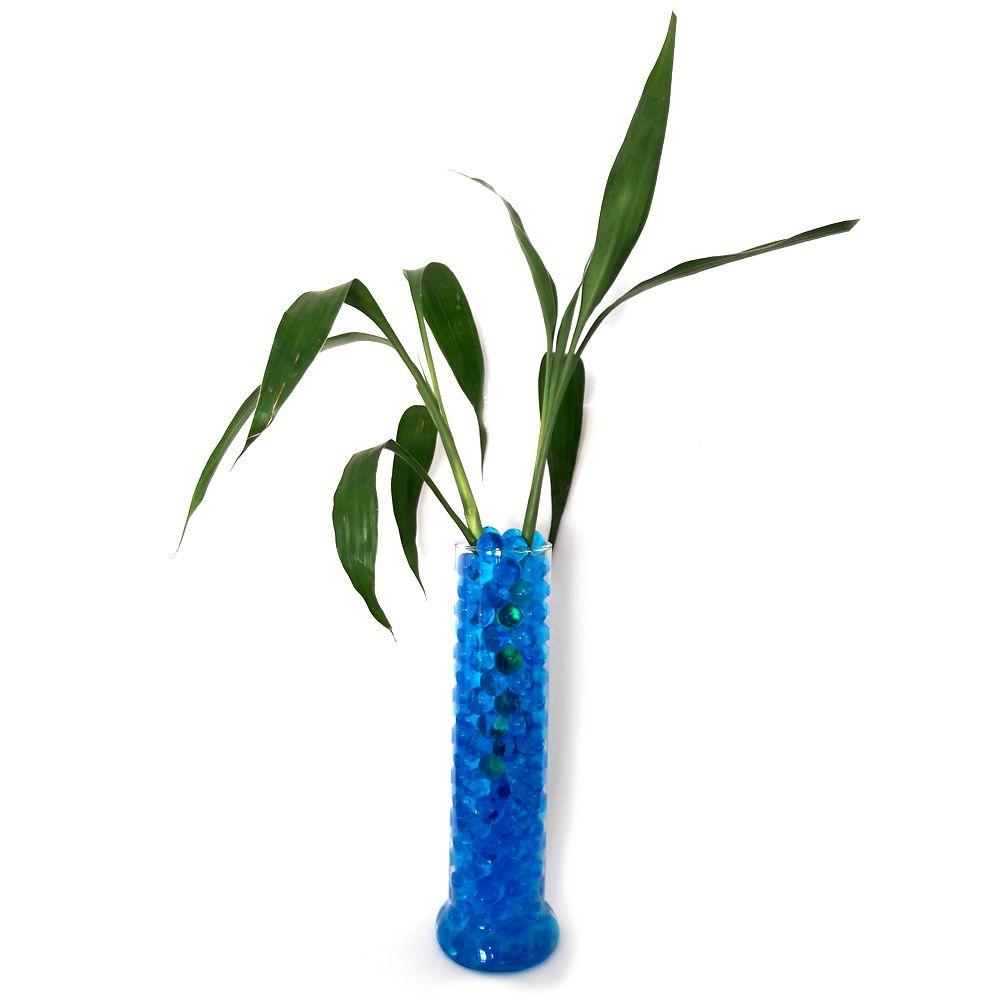 Vaso Tubular em Vidro com Dois Bambus da Sorte (Médio)