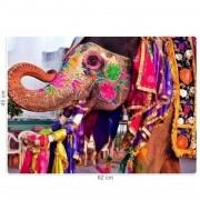 Quebra Cabeça - Cores da Asia - India 1000 Peças Toyster