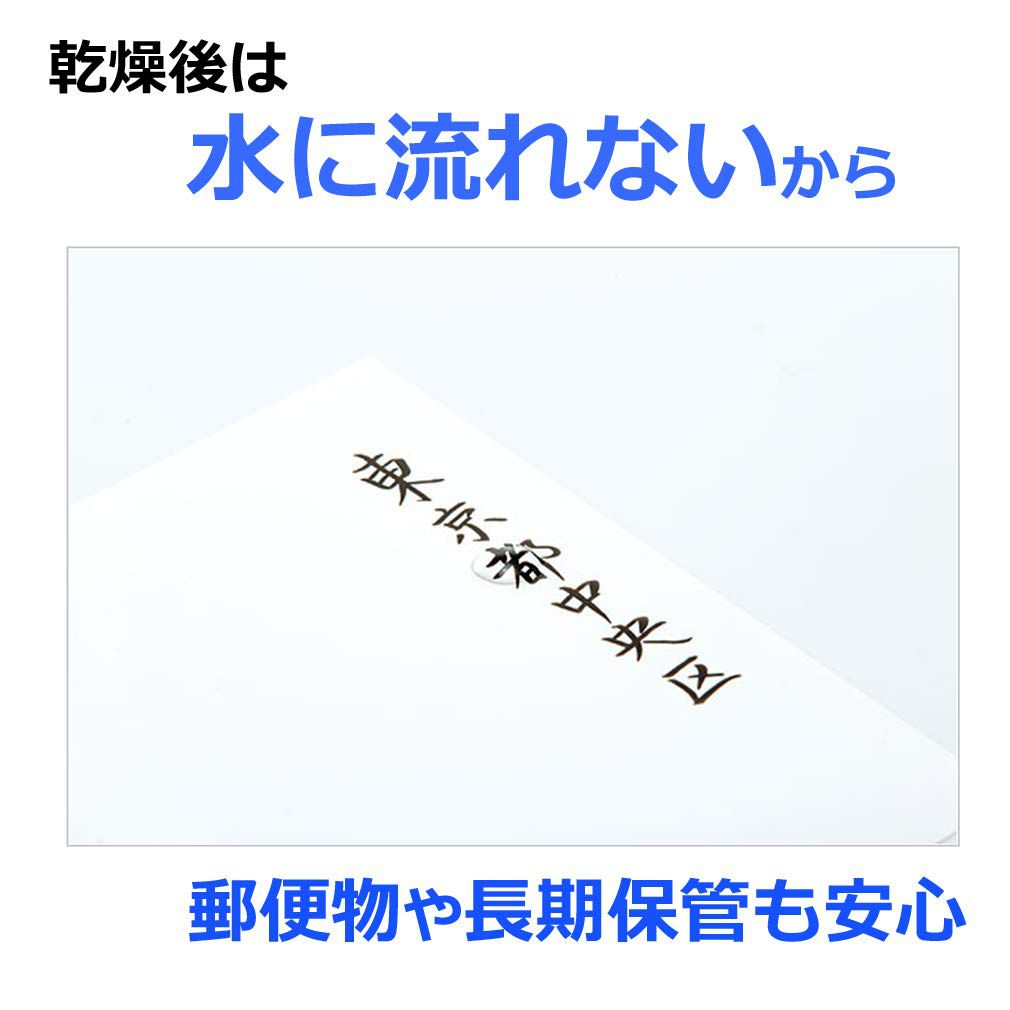 Kit c/10 Canetas Pincel Tombow Fudenosuke Colorida