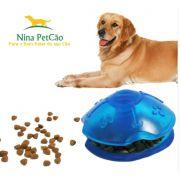 Disco Interativo - Diversão para o seu Cão