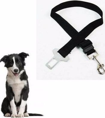 Cinto De Segurança Para Cães E Gatos. Com Fivela!