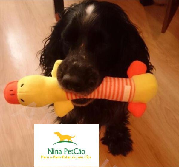 Pelúcias em formato de Animais - Seu cão irá se divertir de montão!
