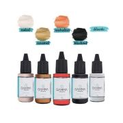 Kit Neutralização de Sobrancelhas - Gamma Pigments